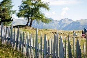 Vacanza escursionistica Valles 01