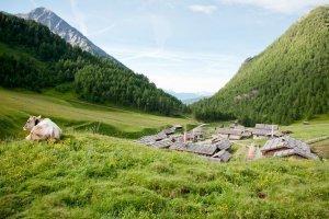 Vacanza escursionistica Valles 04